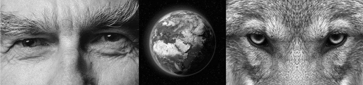 Géographie, animaux non humains et territoires